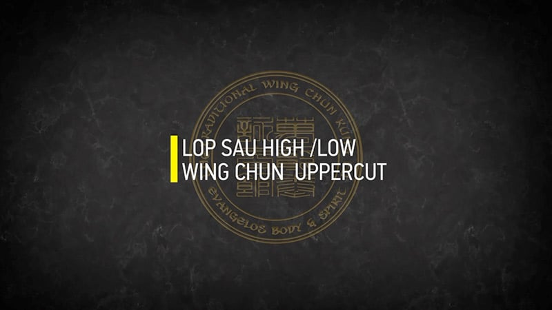 LOP SAU HIGH LOW WING CHUN UPPERCUT
