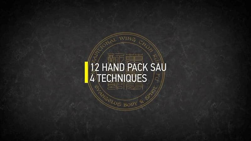 12 HAND PAK SAU 4 TECHNIQUES