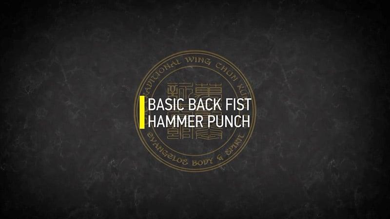 BASIC BACK FIST HAMMER PUNCH