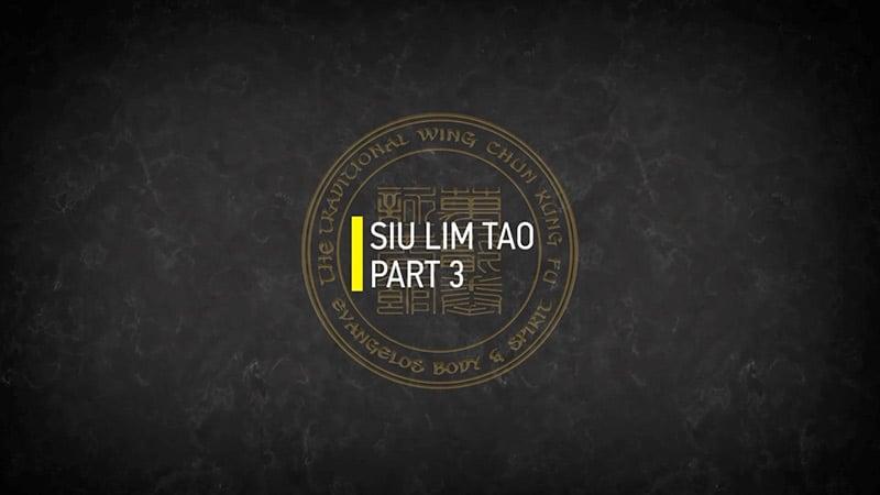 SIU LIM TAO PART 3