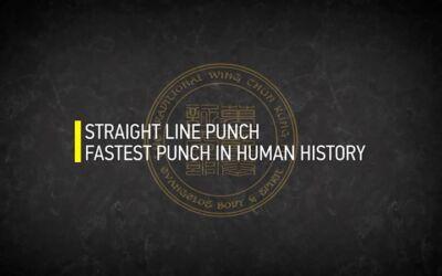 STRAIGHT LINE PUNCH HUMAN HISTORY