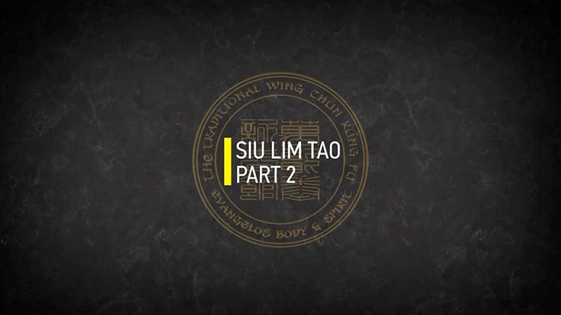 SIU LIM TAO PART 2