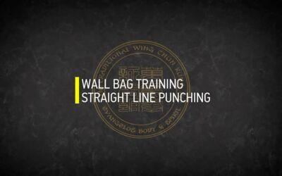 WALL BAG TRAINING STRAIGHT LINE PUNCHING