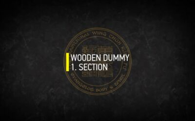 WOODEN DUMMY 1.SECTION