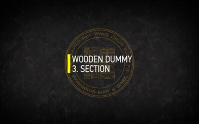 WOODEN DUMMY 3.SECTION