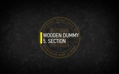 WOODEN DUMMY 5.SECTION
