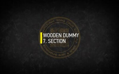 WOODEN DUMMY 7.SECTION