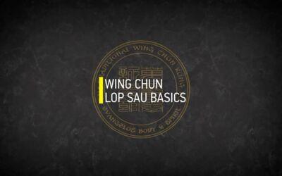 WING CHUN LOP SAU BASICS